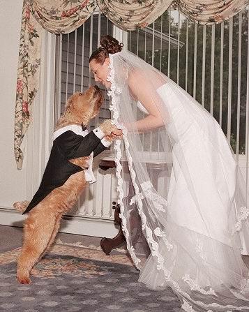 این زن هم که به علت کمبود شوهر با سگ ازدواج می کند